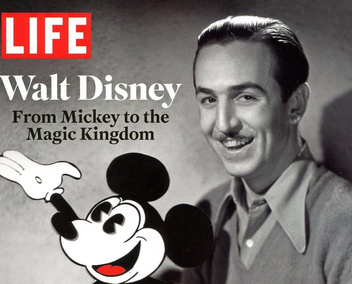 Debating 'Disneyfication' | David Buckingham